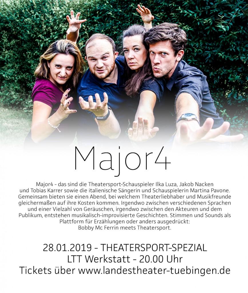 Plakat Show 28012019